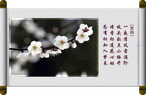 梅花八绝 - 妙缘潇潇编辑