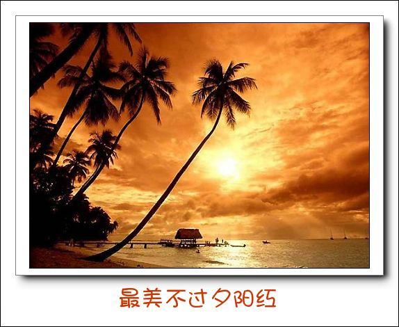 黄昏时那一抹美丽的夕阳 - 烟雨蒙蒙 - 烟雨蒙蒙的博客