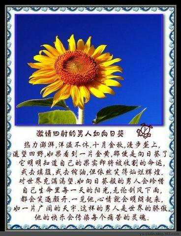 如花的男人 - xiaoxin - 小小的心跳伴随舞动的旋律