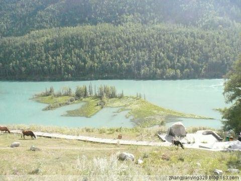 2008我的旅游年(五) - zhangjianying329 - 心静如水