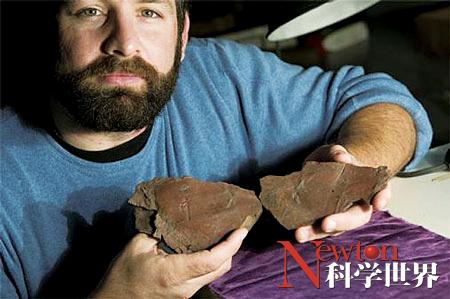 迄今最古老飞虫身体印记化石 - kxsj - Newton-科学世界