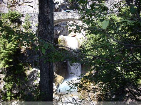 [原创] 雷尼尔国家公园风光欣赏 - 阳光月光 - 阳光月光
