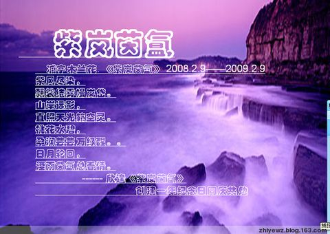好日子 - 紫叶文竹 - 紫叶文竹