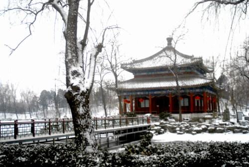 圆明园黑天鹅 - guowz2008 - 郭文章毛体书法