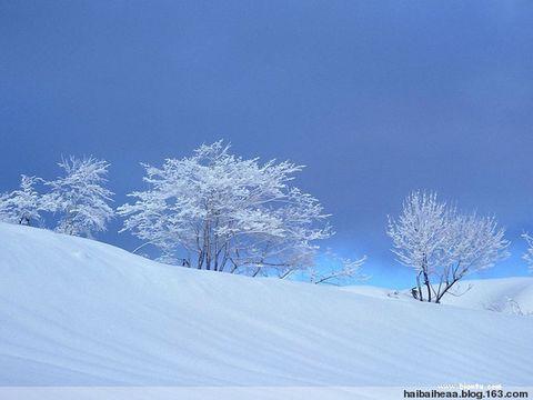喜欢冬天!! - 开心就好 - 开心就好的博客 欢迎你朋友!!