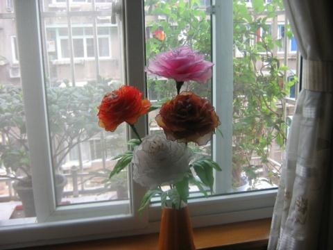记忆转载(2007.11) - 朵儿 - 朵儿