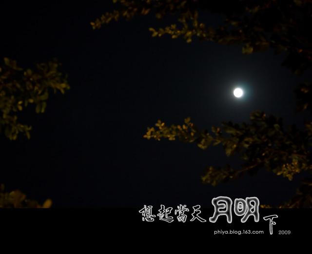 你看你看月亮的脸 - 如果 - 如果的事