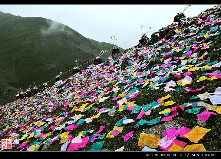 【原摄】祭山记(二)--祭山开始(16P) - 加贝先生 - 加贝先生的博客