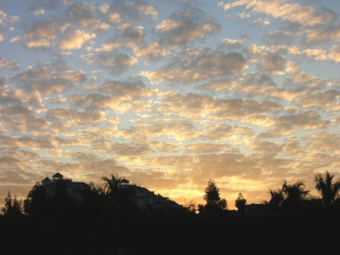 当周一的太阳升起的时候 - 木头人 - sampson827的博客