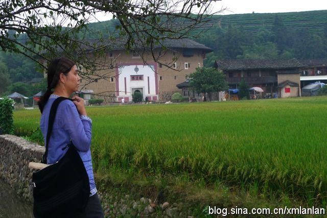 """土楼就在闽西南乡村等待我们 - 土楼画家卢果 - """"道一居""""欢迎您到"""