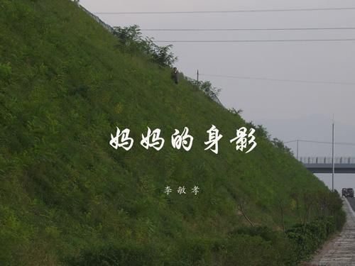 妈妈的身影[原创] - 枫林晚 - 枫林驿站