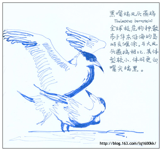 我想和鸟儿为邻 - lq - LQ的博客