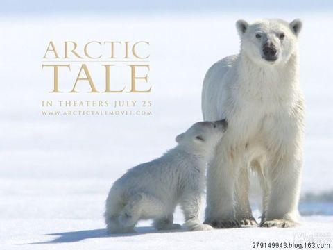 《北极传说》危机传达 - 辛巴 - 【辛巴】