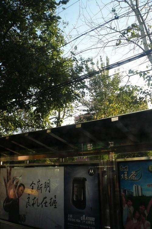 欢迎战友们游览郑州 - 疆字203的博客 - 我的博客