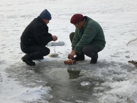 冬日哈尔滨 - 小狐狸 - 我的博客
