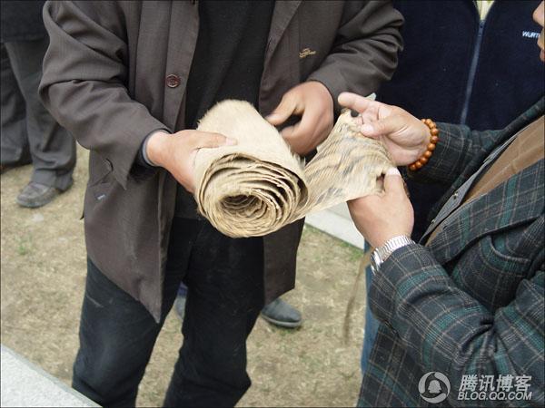 现场直击:非法贩卖巨蟒蛇皮 - aaqq-1232 - 宝君2009