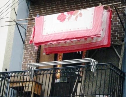 春江潮水连海平--春节里来作导游(2) - 老虎闻玫瑰 - 老虎闻玫瑰的博客