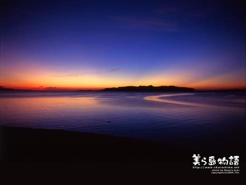 梦境分析:lynn关于水中生活的来信(N图) - 巫昂 - 巫昂智慧所