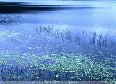 〖原创〗美在自然 - 常随佛学 - 常随佛学 网易博客
