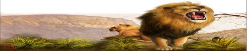 巴巴里狮 - 《新知客》杂志 - 新知客