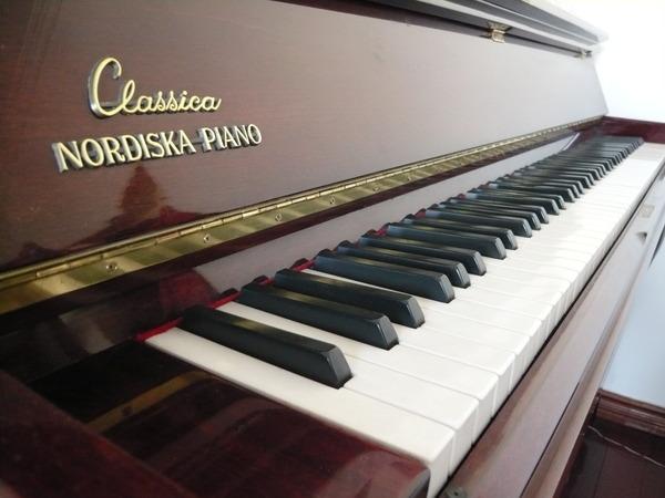 诺的斯卡 - 东莞乐博钢琴世家 - 东莞乐博德国钢琴展示中心博客