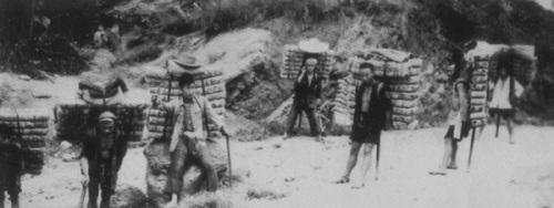 川藏茶马古道上流传的背茶山歌 - 藏茶帝国 - 黑茶帝国的博客