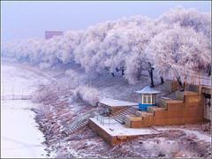 【原创】词.满江红(军民抗雪灾)/嫦娥奔月【原创】 - 嫦娥奔月 - 嫦娥奔月
