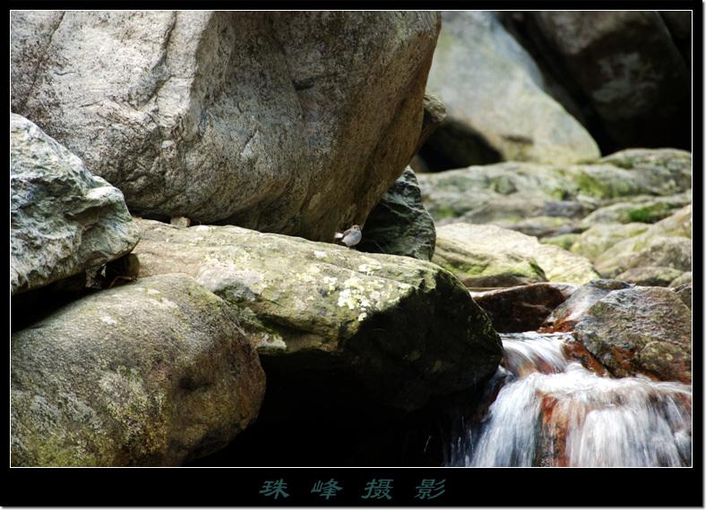 【原创】庐山-三叠泉 - 珠峰 - 插上飞翔的翅膀