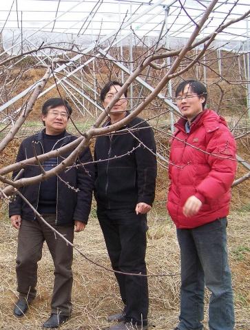 上海市农科院林果所叶正文所长来访 - 清扬 - 花果飘香