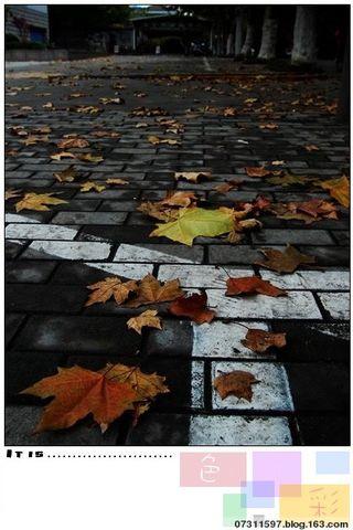 无 题 - 秋雨禅声 - 秋雨禅声的博客