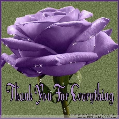 朋友的祝福 - 紫贝壳 - 紫贝壳的博客