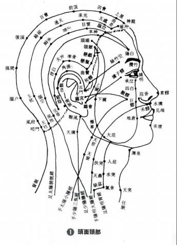 引用 人体各部位反射区 - 冰凌 - 展现自我  博采众长