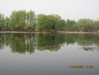 三游上庄水库 20080411