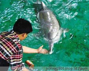 """就白鳍豚灭绝说人类之""""爱""""(原) - 青青茉莉花 - 保护自然.崇尚真理.热爱生活"""