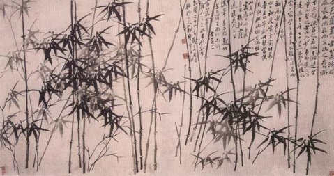 引用 竹的悠扬 - 风轻扬 - 如瓷淡淡的博客