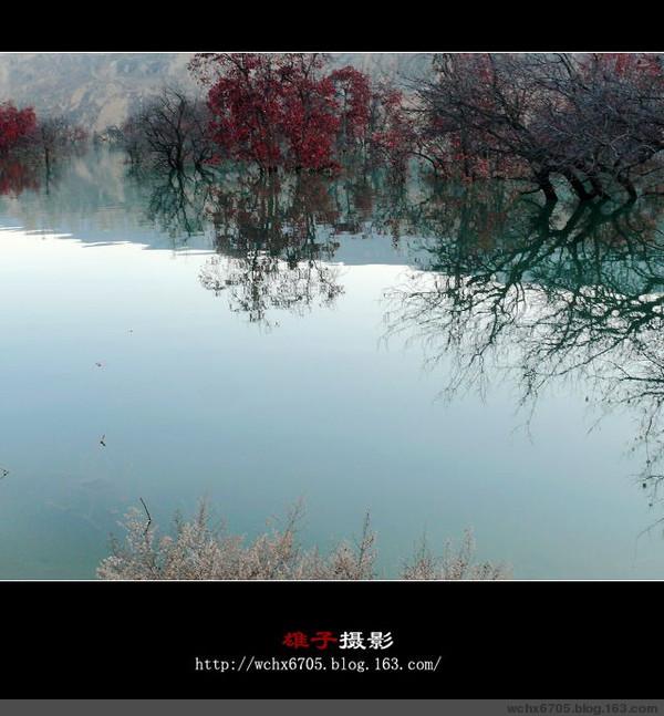 【原创图文】疑似江南--黄河边上的作业(下) - 雄子 - 雄子言语