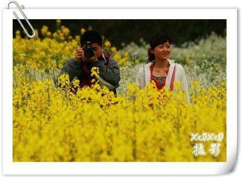 【环游闽赣浙】 5、漫步在婺源江岭油菜花海中 - xixi - 老孟(xixi)旅游摄影博客