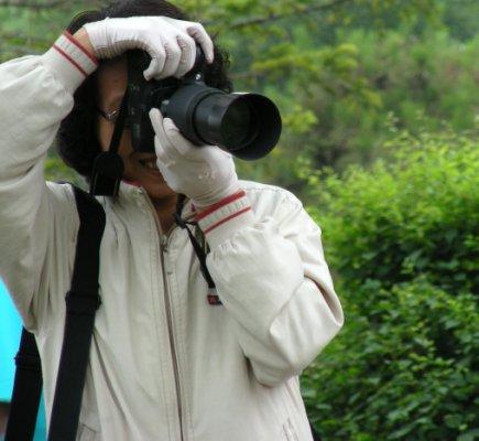古塔公园的早晨 - 人淡如菊 - 人淡如菊的博客