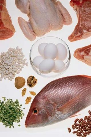 减肥: 每餐吃些蛋白质更易减肥 - 金山 - 金山教你如何边吃边减重