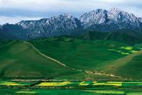 河西走廊(中国甘肃省西北部狭长高平地,因在甘肃境内,也称甘肃走廊) - zyltsz196947 - zyltsz196947的博客