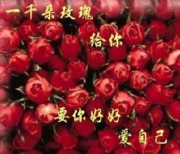 《雨忆诗集》———你的冷让我无法靠近 - 雨忆兰萍 - 网易雨忆兰萍的博客
