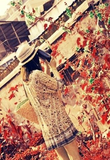让照片充满感情的色彩 - 甡★侞嗄歡 - The dream of alfalfa