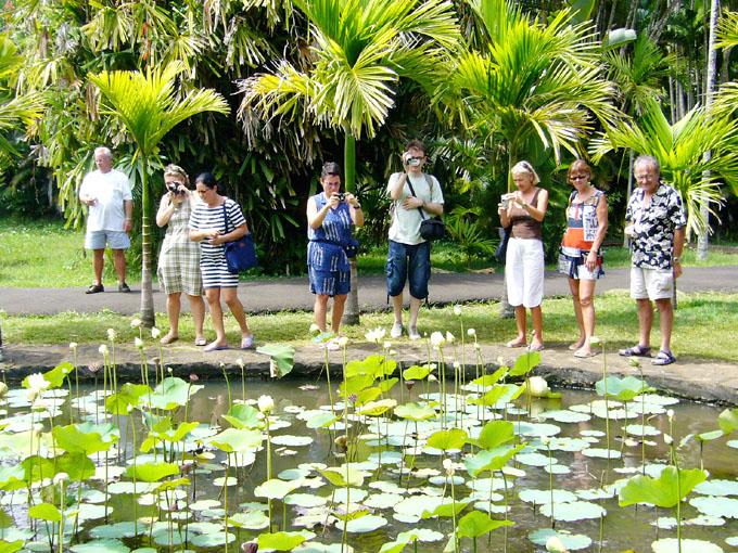 毛里求斯真风景---Mauritius - 鱼儿 - 鱼儿的遨游生活