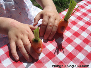 吃饭不仅仅是吃饭 - BERRYTREE - 熊璞的博客