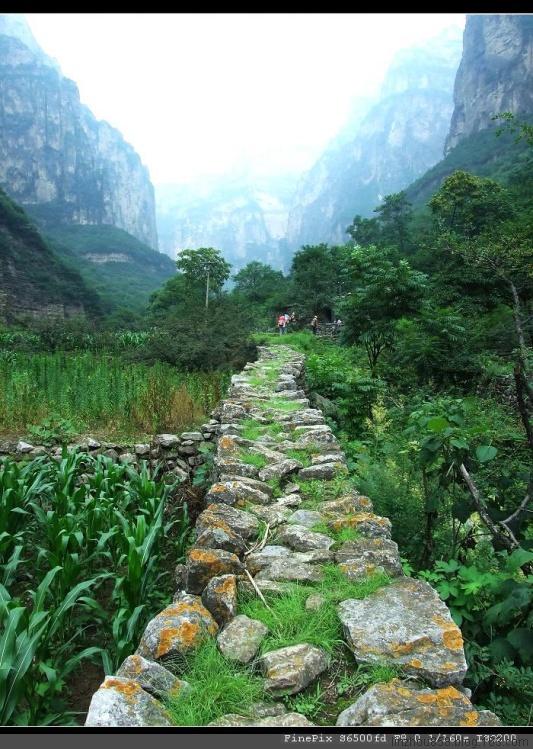 [原创]林州乡村采风——马地凹 - 林中漫步 - 林中漫步 博客