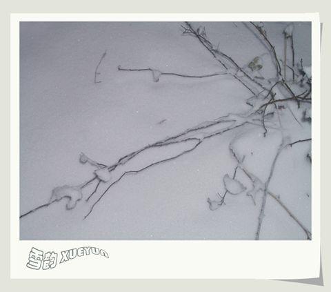 [原创]白雪圣情 - Kajia - 脚印一点点