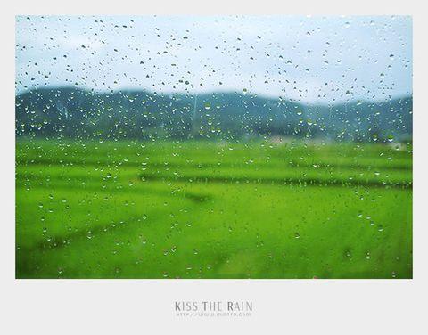 引用 Kiss The Rain 雨的印记 钢琴曲