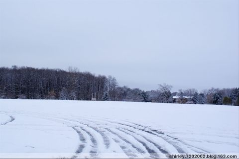 冬天真的来了 - shirley.7202002 - shirley.7202002的博客