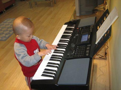 玩一玩的话学电子琴也就可以图片