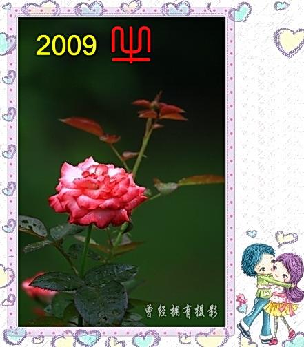 (原创摄影)新年问候小图片 - 曾经拥有 - 我的摄影花园